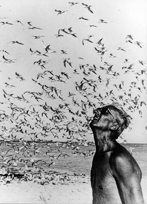 """When one man, for whatever reason, has the opportunity to lead an extraordinary life, he has no right to keep it to himself"" Jacques-Yves Cousteau."