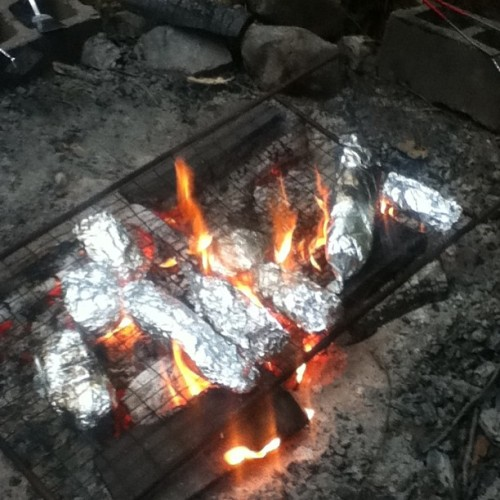 Making foil diner with the Girl Scouts #fire #campfire #foildiner #girlscouts