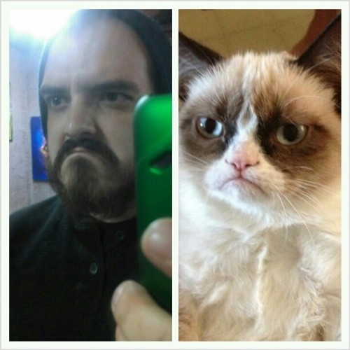 I love him so much more then I ever have before. #grumpylex #grumpycat @lex_incisiontattoo
