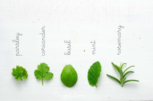 eatcleanmakechanges:  herbs.