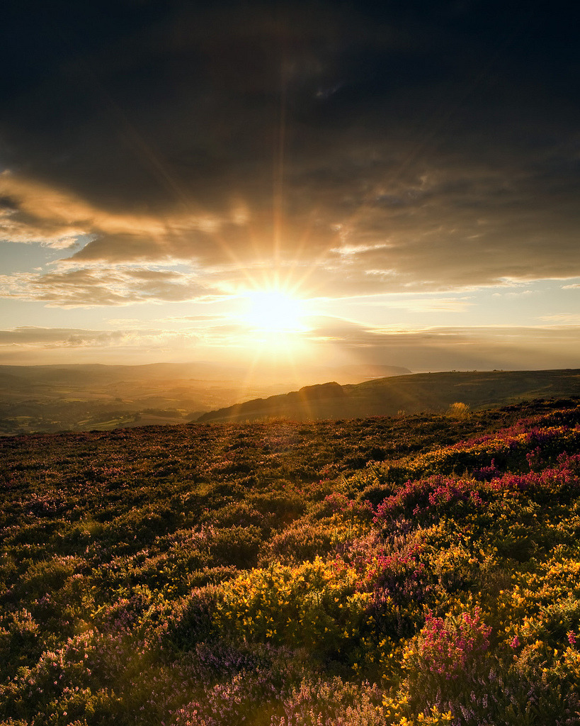 bklynmed:  Sunset over the Quantocks (by peterspencer49)