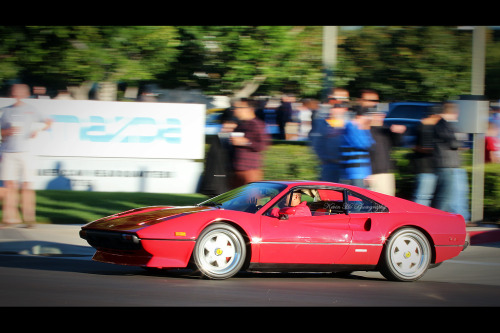 Almost magnum Starring: Ferrari 308 GTB (by Kevin Ho 車 Photography)