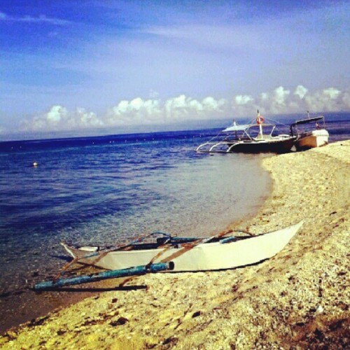 Balicasag Beach, Bohol #travel #beach #philippines