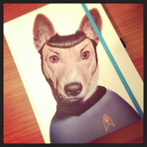 New notebook! (Live long and prosper).
