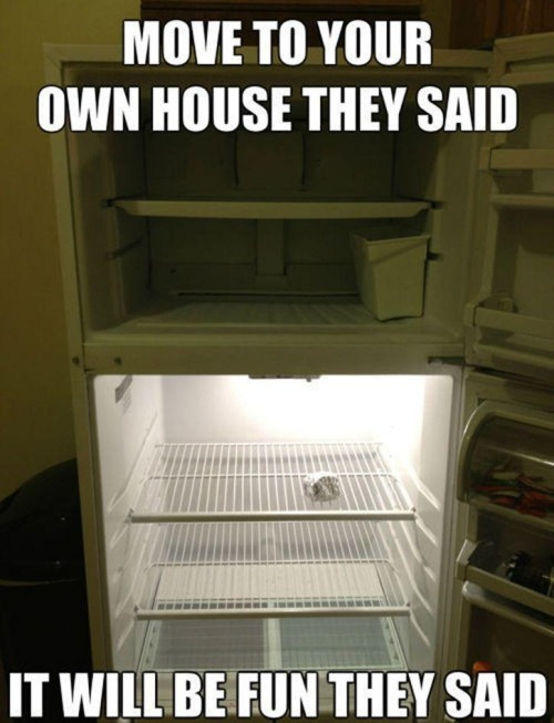 For a second there I thought this was an actual picture of my fridge.