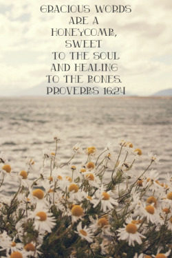 agirlchangingtheworld:  Reminder for your day!  Proverbs 16:24