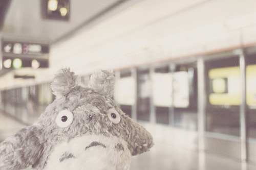 Totoro - Subway (by Green Tea Lover)