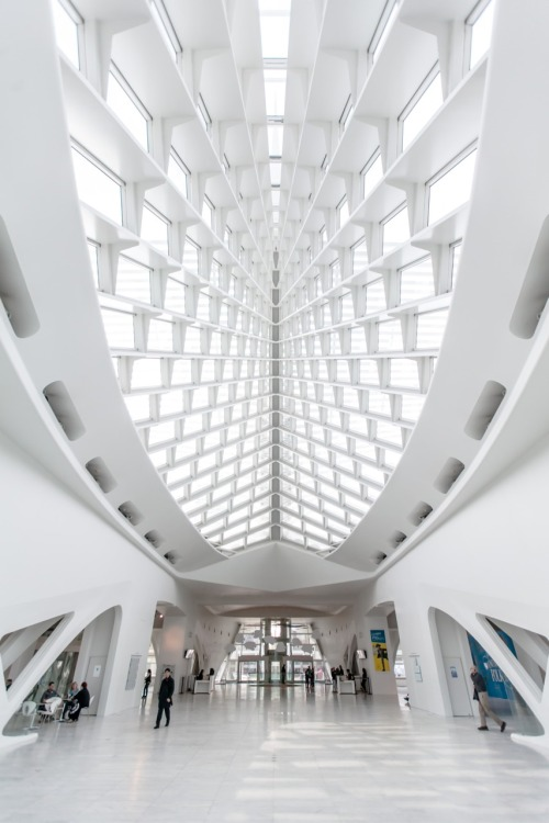 archimess:Milwaukee art museum excursion….. Calatrava blows my mind.