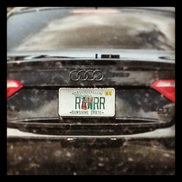 RAWRR! Spotted by @monkeyninjapirate while we were driving.