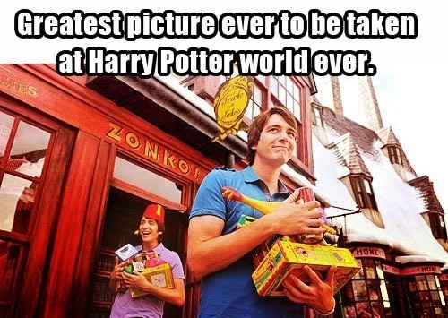 geek-supreme:  Dying. They are too cute.   There's a Harry potter world?!
