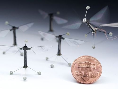 Robotics researchers unveiled an electronic housefly on Thursday, one that can hover in air, flapping its wings to steer in a first demonstration of controlled artificial-insect flight.  WHAT WERE YOU THINKING, SCIENCE?