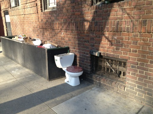 This will be my go-to public toilet from now on.