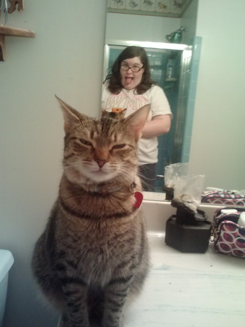 getoutoftherecat:  cat you are messing up my selfie.