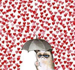 cat fuck love Valentine's Day no love fuck valentines day no cat raining love