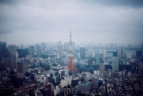 dreams-of-japan:  016 by ERIC SAY HI on Flickr.