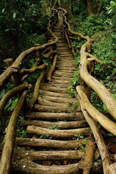 lori-rocks:  fairytale stairs via pinterest