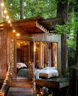 tree nature peace amazing cabin house relax Wood