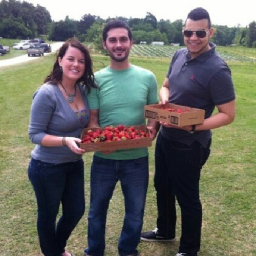 Strawberry picking with emmy and dragos  (at smithfield, NC)