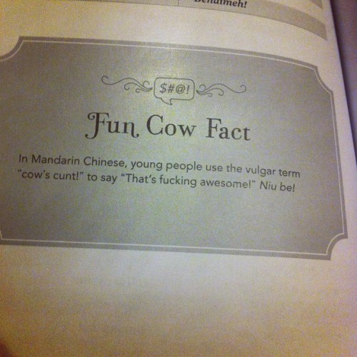 Fun fact indeed!!