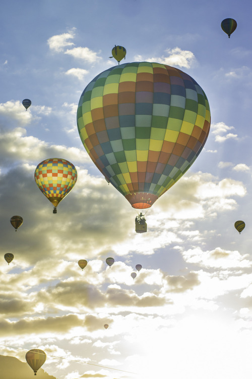 h4ilstorm:  Albuquerque International Balloon Fiesta (by Zeiss-aholic)