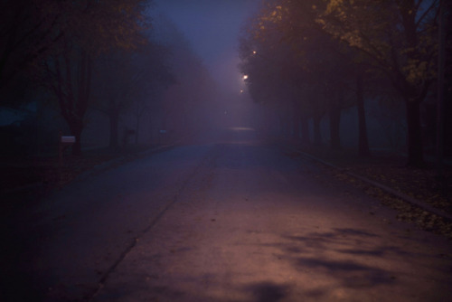 fog & shadows. on Flickr.10-23-2012.