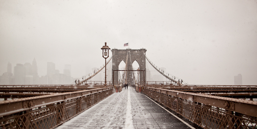 Brooklyn Bridge x Nemo