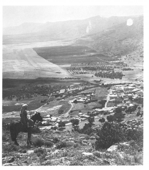 Horseman overlooking the village of Daburiyyah on the slopes of Mount Tabor, Galilee , Palestine . ( R: Khalil Raad collection/ 1876-1918)