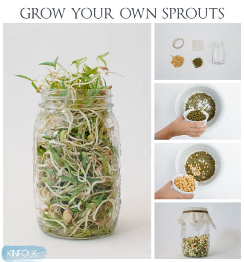 niftyncrafty:  DIY Guide to Growing Your Own Sprouts // Kinfolk This is such a cute little easy guide for you to be able to grown your own sprouts for salads at home.