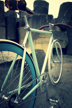bisikleta:  TAIWAN FIXEDGEARA SHOP OZOTW X CUSTOM LUG COMPLETE BIKE (by OZOTW)