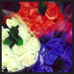 Favorite flowers <333 #roses #red #white #purple #rose #beauty #unique #beautiful