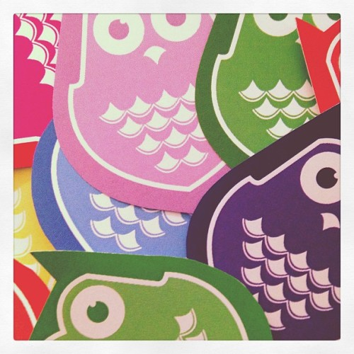 #colorful#owls