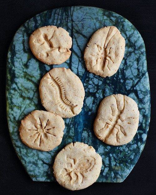 etsy:  MAKE | Fossil Cookies Made Using Plastic Bug Toys.