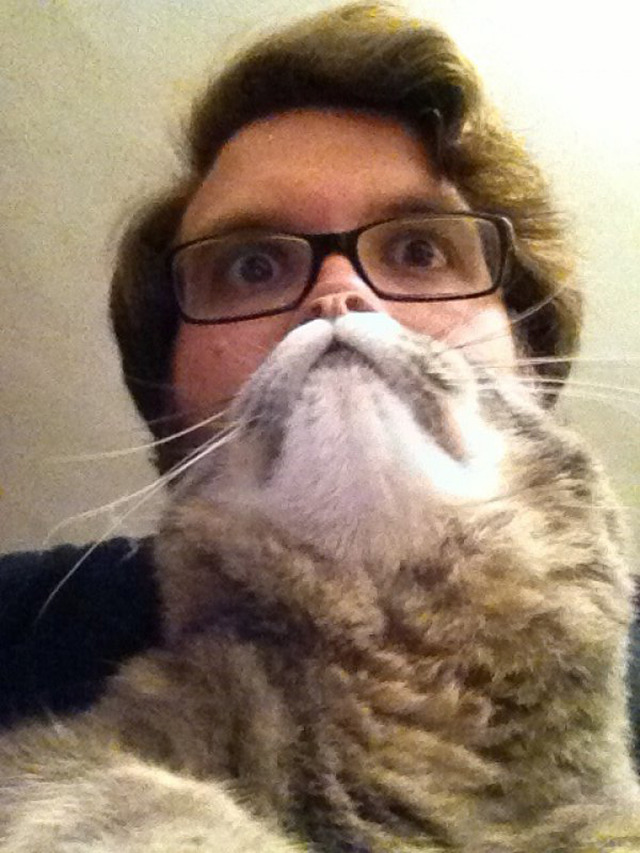 laughingsquid:  Cat Beards, A Photo Meme Where People Place a Cat in Front of Their Face to Make a Furry Beard