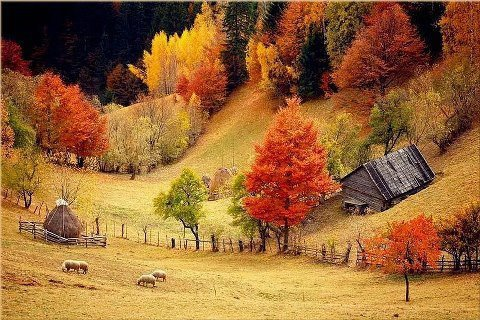 Autumn in Romania