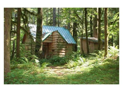 micromanor:  Charming Tiny Cottage in the Forest-  360 Sq. Ft. For sale in Oregon.