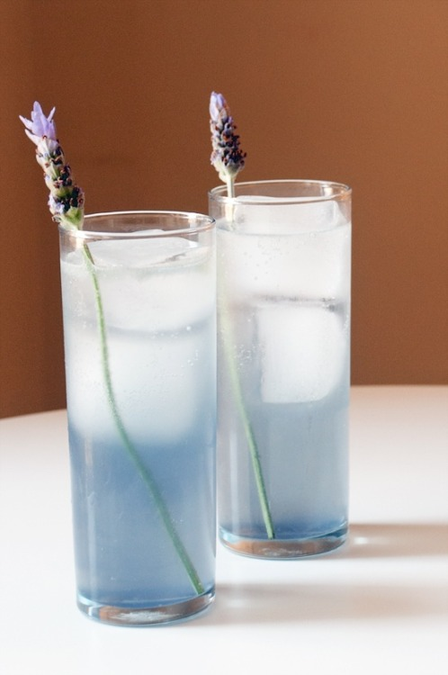 basilgenovese:  Lavender Collins Cocktail via YumSugar