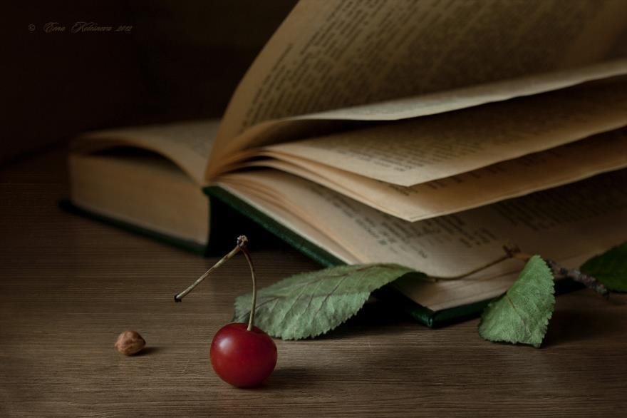 staceythinx:  Still life photography by Elena Kolesneva
