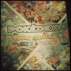 A Pokemon Master's Bible. B)
