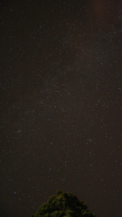 freddie-photography:  Milky Way