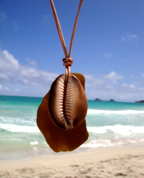 Hawaiian Amber Brown Beach Glass & Cowry (cowrie) Shell on Thin Durable Genuine Leather Cord Necklace Handmade with Aloha! …surfer chic…