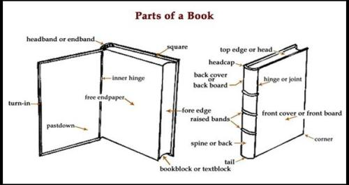 Know your tome – anatomy of the book. Pair with how a book is made, from antiquity to the Middle Ages to today.