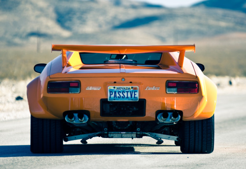 Hitting the desert Starring: De Tomaso Pantera (by ReverClothing)