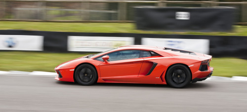 Unleash me Starring: Lamborghini Aventador (by jasoncornish)