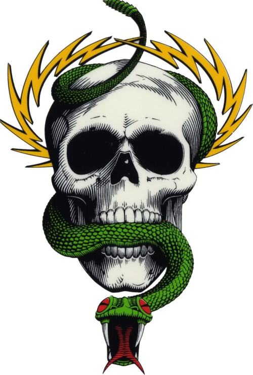 Mike McGill Skull and Snake graphic