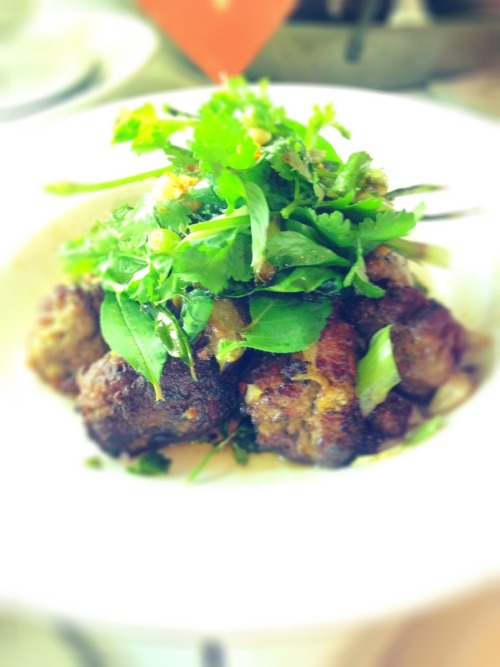 A Lao and Thai inspired dish.   Aromatic meatballs made with Warialda Beef popes eye, sinews and tendons with Greenvale Farm pork fat. I fried them with eggplant and three kinds of basil from my garden, fresh coriander, then dressed it with prik nam pla.  The meatballs were made by cooking the beef, sinews and tendons in masterstock with cassia, star anise, brown cardamon, Kampot pepper and ginger before mincing and forming the balls. No further seasoning required.
