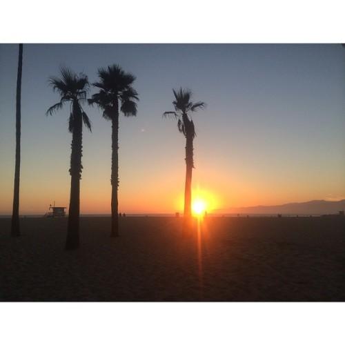 #latergram (at Venice Beach)