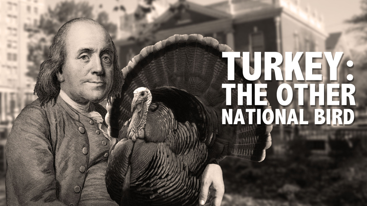 Want to know why America pardons a turkey every Thanksgiving? Did you know the turkey was almost our national bird? White meat or dark meat? Well, from the archives we have a Laughing Historically on just that. Watch! Share, enjoy, and as usual thanks for watching.