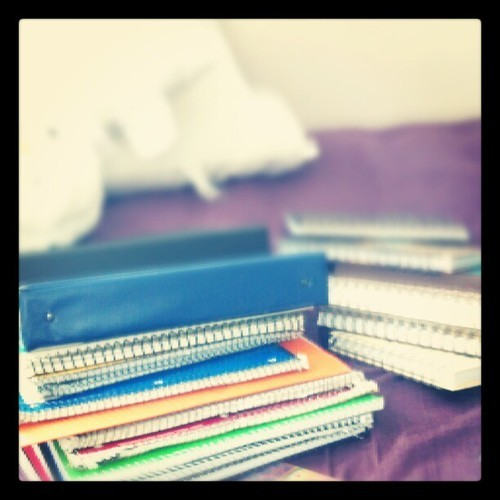 There is no such thing as too many notebooks!