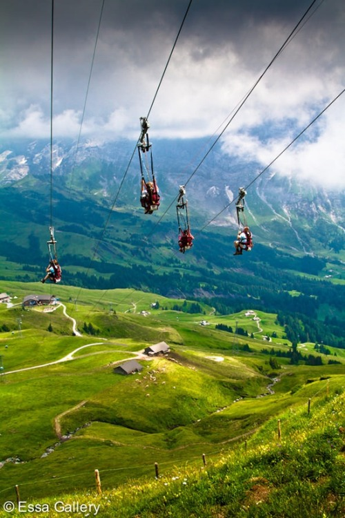 Mountain Ziplining, The Alps, Switzerland photo via besttravelphotos