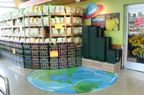 Earthlings Display by Lauren and Andrew I Pembroke Pines, FL